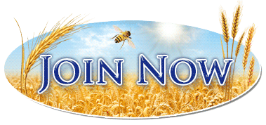 Join Harvest Traffic